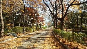 성남에서 가장 오래된 공원, 희망대공원