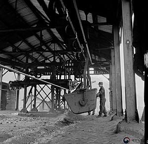 지역의 석탄을 공급받던 화력발전소(영월, 동해)