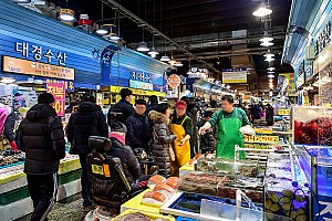 농수산물 유통 근대화를 위해 만들어진 가락시장