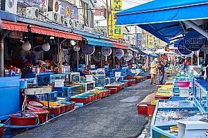 조선시대 3대 수산물 집산지였던 마산포에 개설된 마산어시장