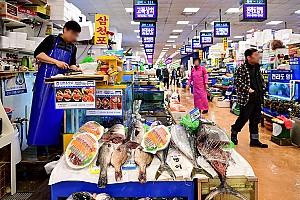 내륙 최대의 수산물 도매시장인 노량진수산시장