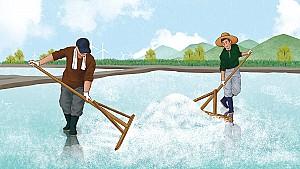 인천 남동구에서 소금밭을 써레질할 때 부르는 염전밭가는 소리