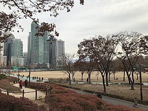 대한민국 공군의 요람에서 시민의 휴식처로 변신한 보라매 공원