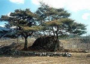 아기장수의 말이 묻혀 말무덤이라 불리는 거창 거기리 성황단