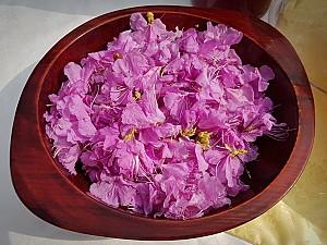 눈으로 보는 꽃의 아름다움이 화려한 음식으로, 화전(花煎)