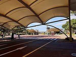 72만㎡ 드넓게 펼쳐진 제주 경마공원 - 렛츠런파크