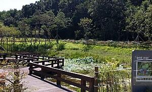 대전 수돗물의 역사, 세천유원지