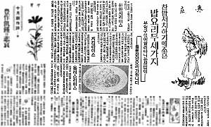 해방이후 생산된 국산 토마토케첩