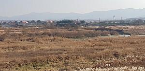 천연기념물 미호종개의 고향, 팔결교와 미호천