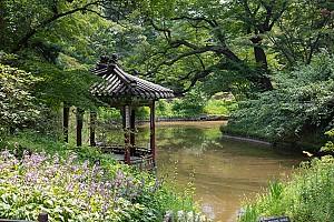 연못에서 뱃놀이를 구경하는 정자, 창덕궁 관람정