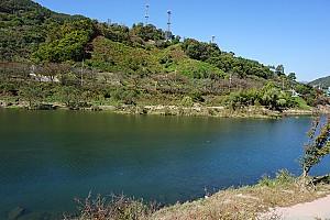 섬진강의 어살과 민물고기