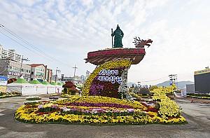 국내 최대 국화생산지에서 열리는 '창원가고파 국화축제'