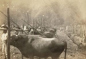 수도권과 삼남지방의 물건을 교류하던 청주 육거리종합시장