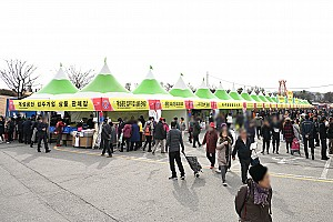 알콩 볼콩 달콩 놀콩 '파주장단콩축제'
