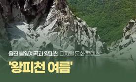 울진 불영계곡과 왕피천 디지털 문화 콘텐츠 '왕피천 여름'