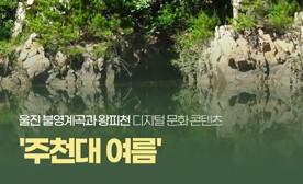 울진 불영계곡과 왕피천 디지털 문화 콘텐츠 '주천대 여름'